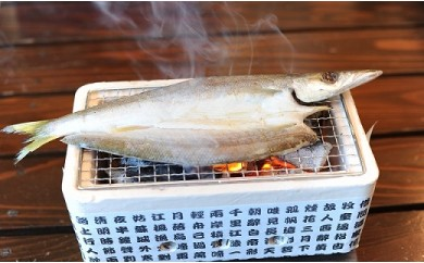 35.「唐津うまか干物詰合せ」 6魚種×全13枚