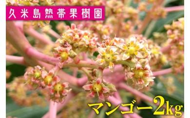■2018年分■久米島熱帯果樹園マンゴー2kg【4~6玉】