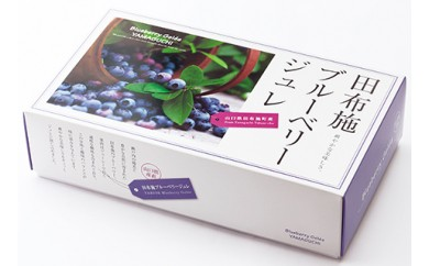B-19果実ゼリー【レモン食品】ブルーベリージュレ6個入2セット