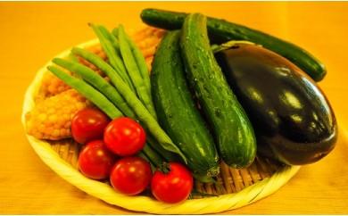 小海産野菜セット[さかまき農園]