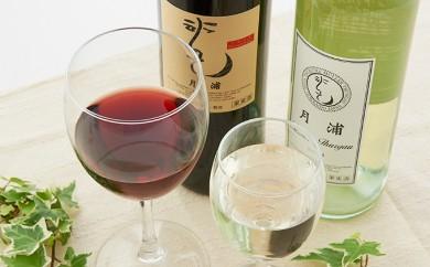 [№5834-0150]月浦ワイン2本セット(白・赤750ml)
