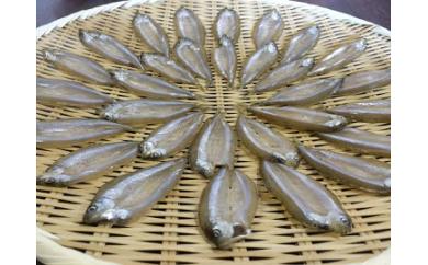 【素材の味をお楽しみください】琵琶湖産 天然わかさぎ一夜干し
