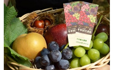 RE151 平田観光農園 入園ペアチケット(体験付)【1.5P】