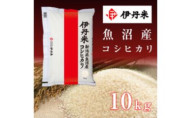 D-2 新潟県魚沼産コシヒカリ10kg×2袋