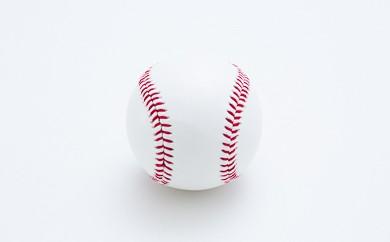B3017-02 国産統一硬式野球ボール「チャレンジ」10球セット
