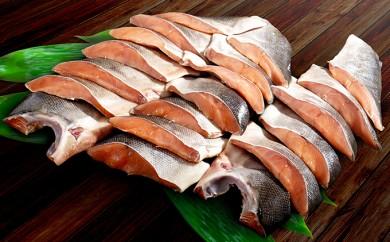 [№5834-0167]噴火湾産低温熟成新巻鮭切り身 約3kg
