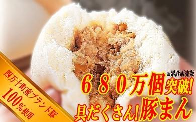 Qa-06 ブランド豚を使った本格飲茶!特製豚まん・肉しゅうまいセット(大)