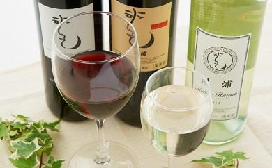 [№5834-0151]月浦ワイン3本セット(白・赤・樽赤750ml)