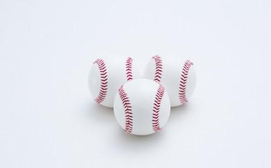 F3017-01 国産統一硬式野球ボール「チャレンジ」30球セット