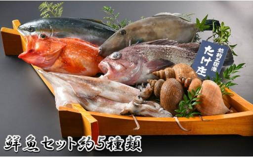 [E-1603] 『越前三国の恵み』 鮮魚セット
