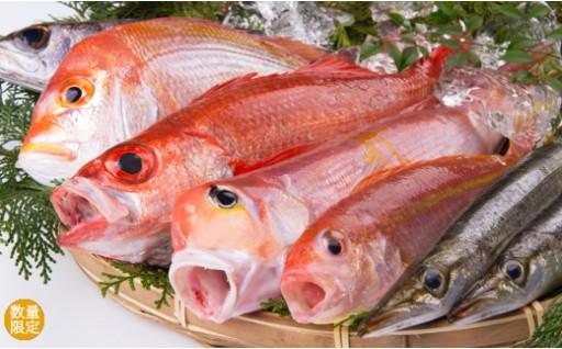 【C12】鮮魚詰め合わせセット