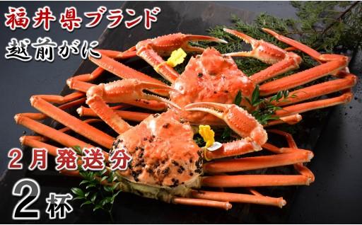 [O-1401] 【2月発送分】福井県ブランド 「越前ズワイ蟹」 0.9kg以上 2杯