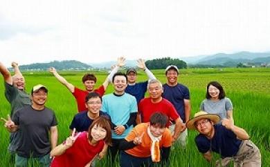 丹波たぶち農場の特別栽培米こしひかり5㎏ 10㎏
