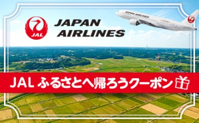 【秋田市】JAL ふるさとへ帰ろうクーポン(3,000点分)