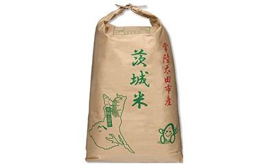 令和元年産 常陸太田市産 コシヒカリ玄米30kg