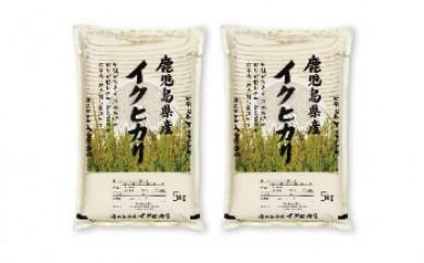 早場米大崎産「イクヒカリ」10㎏(新米を8月からお届け)