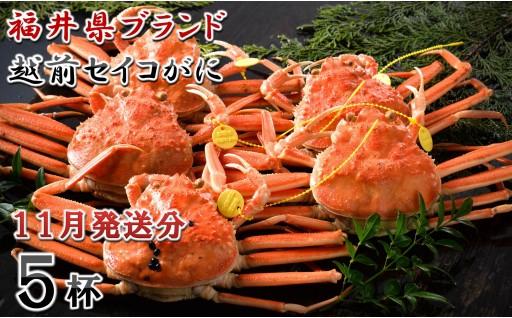 [G-1401] 【11月発送分】福井県ブランド 「越前セイコ蟹」 大中5杯セット