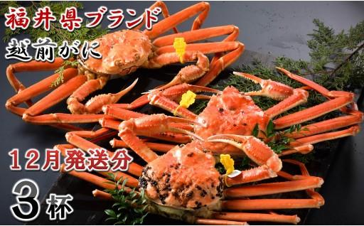 [P-1401] 【12月発送分】福井県ブランド 「越前ズワイ蟹」 0.9kg以上 3杯