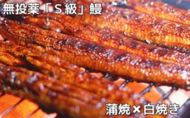 大隅産無投薬鰻☆泰正オーガニック 白焼きと蒲焼き