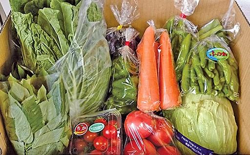 野菜詰め合わせBOX【7月発送分】