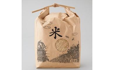 【玄米】 丹波産こしひかり玄米3㎏×2