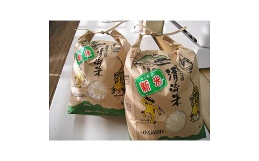 <加美町産>清流米 ひとめぼれ 8kg【1029130】