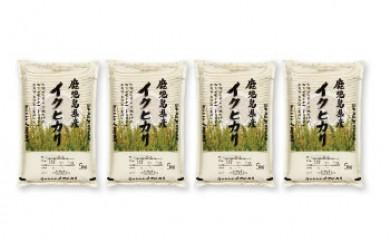 早場米大崎産「イクヒカリ」20㎏(新米を8月からお届け)