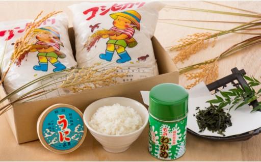 [B-1703] 坂井市産コシヒカリ 4kg と 坂井市定番ご飯のお供セット