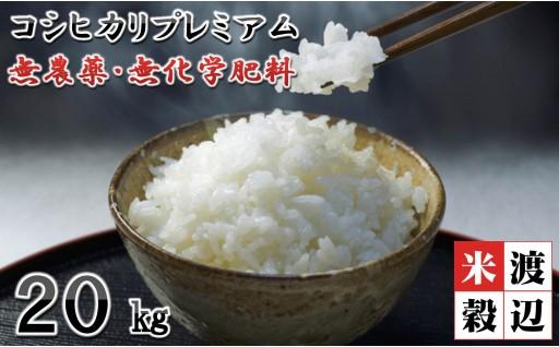[E-2904] 【新米先行受付!】山の麓で生まれた平成31年新米 無農薬コシヒカリプレミアム 計20kg