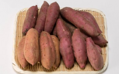 【受付終了】鹿児島大崎産四種のさつま芋詰め合わせ