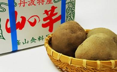 丹波山の芋 秀品