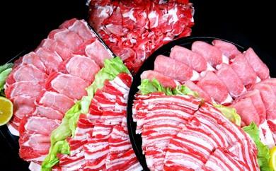 都城産豚肉詰め合わせ