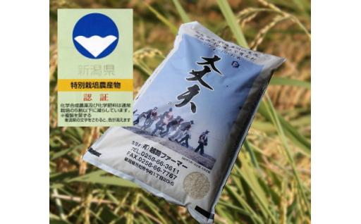 ND②【平成30年産 新米】新潟県産コシヒカリ「大丈夫」精米40㎏