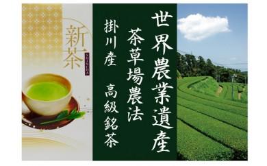 503-183-C 新茶【特上 一番人気】高級深蒸し茶 100g×7本