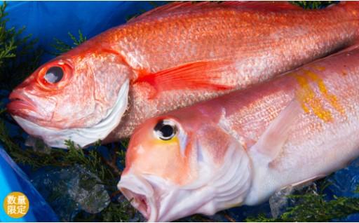 【B10】鮮魚詰め合わせセット