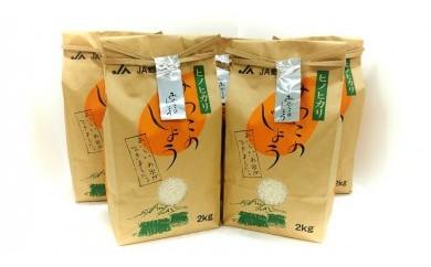 都城産ヒノヒカリ 10kgセット