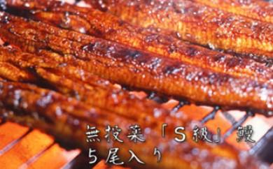 大隅産無投薬鰻☆泰正オーガニック 蒲焼き5尾