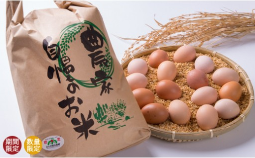 【A51】特別栽培米 5kg・ひらがい有精卵 16個