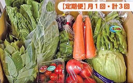【月1回・計3回】野菜詰め合わせBOX定期便