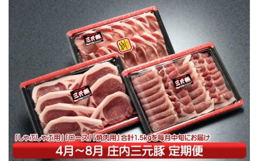 【J-789】庄内三元豚!うまさ満点定期便(4月中旬より配送開始 入金期限:H30.3.25)