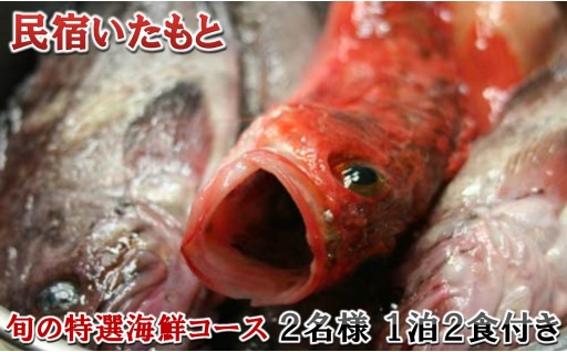 [G-5501] 「民宿いたもと」 旬の特選海鮮コース 【一泊二食 ペア宿泊券】