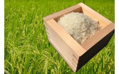 【頒布会】農薬を一切使わないお米(29年米)5kg×月2回×3ヶ月定期コース 全6回お届け