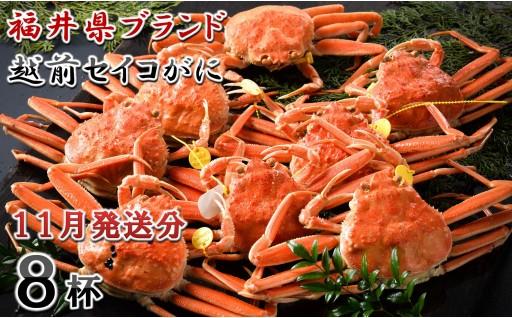 [J-1402] 【11月発送分】福井県ブランド 「越前セイコ蟹」 大中8杯セット
