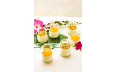 冷凍チーズプリン「おおさき完熟マンゴー」&「おおさきパッションフルーツ」
