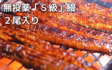 大隅産無投薬鰻☆泰正オーガニック 蒲焼き2尾