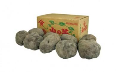 丹波篠山山の芋秀品4㎏箱