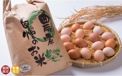 【B13】特別栽培米 15kg・ひらがい有精卵 20個