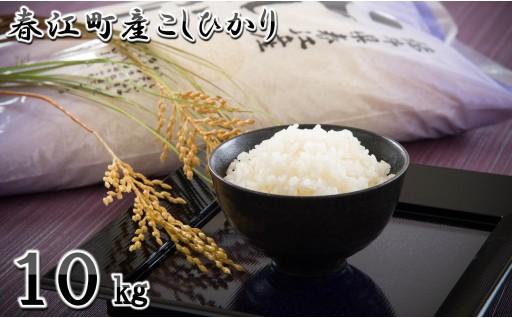 [A-0303] 【令和元年新米】春江町産コシヒカリ 10kg ~春江町のきれいな水で育ったお米~