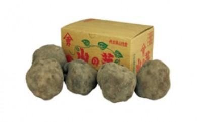 丹波篠山山の芋秀品2㎏箱
