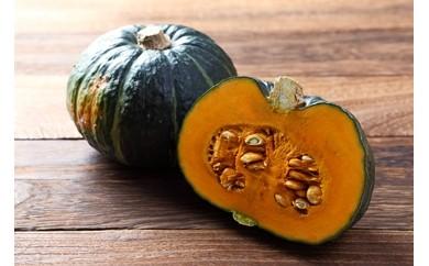 伊東農園 「羊蹄山麓の恵み 坊ちゃんかぼちゃ」